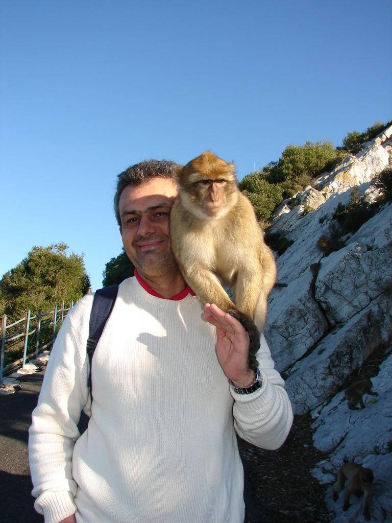 gibraltar (4)